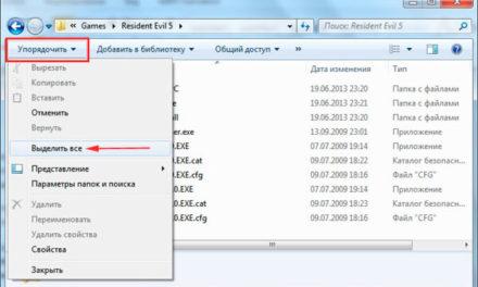 Способы выделения файлов и папок в Windows 7, 8