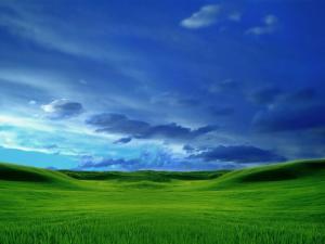 """Это """"безмятежность"""", """"выдранная"""" скорее всего из ранней версии Windows Longhorn (рабочее название Windows Vista)"""