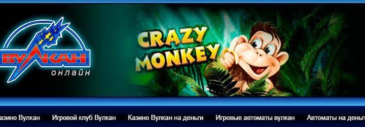 Новинка в казино Вулкан 24
